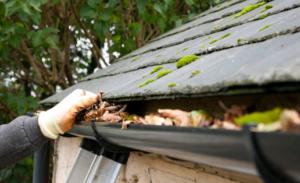 fall home maintenance gutter cleaning